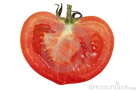 tomato cross section cross section of tomato royalty free stock photos image
