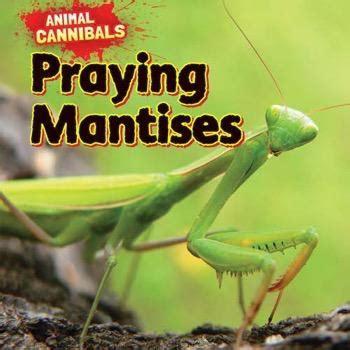 praying mantises rosen publishing