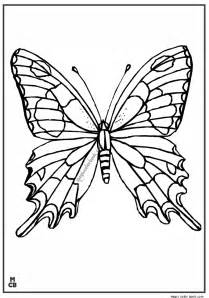 Adults Patterns Coloring Pages Butterfly sketch template