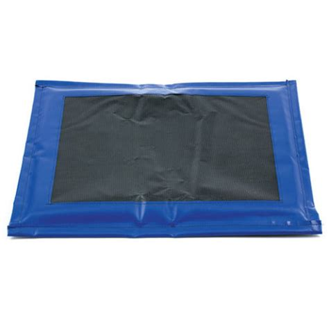 disinfection mat revival animal health