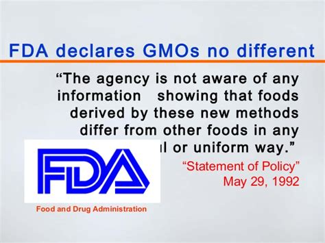 the health risks of genetically modified gmo foods the health risks of genetically modified gmo foods