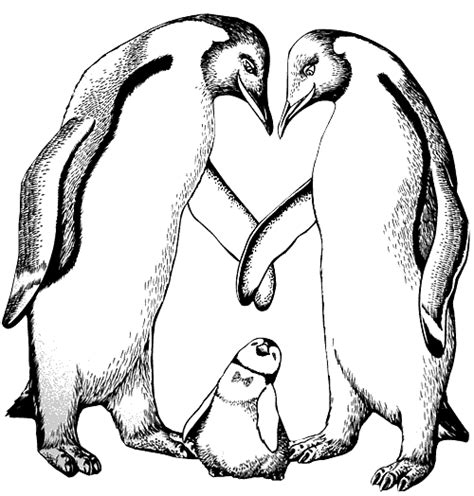 coloring pictures of baby penguins coloring penguins with baby penguin picture