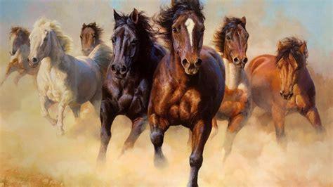 Horses wallpaper   (10041)