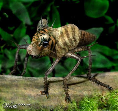 imagenes animales raros animales raros parte 2 im 225 genes taringa