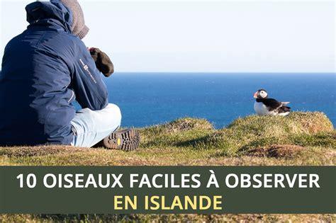 D Island 11 10 oiseaux faciles 224 observer en islande