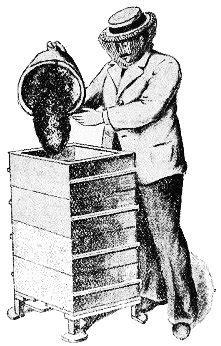 Chapitre 33:Transvasement - extrait du livre l'apiculture
