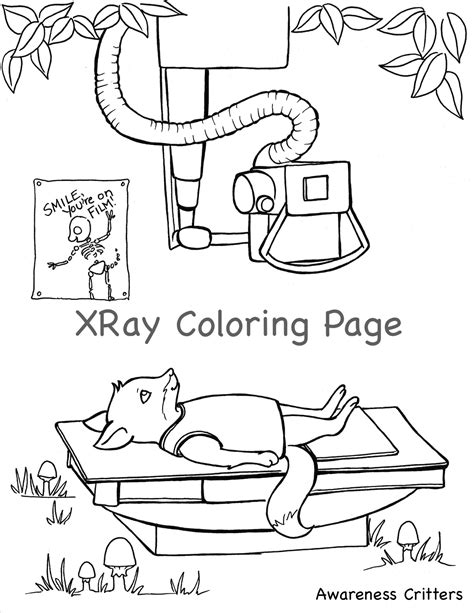 x ray printable coloring pages x ray coloring pages awareness critters grig3 org