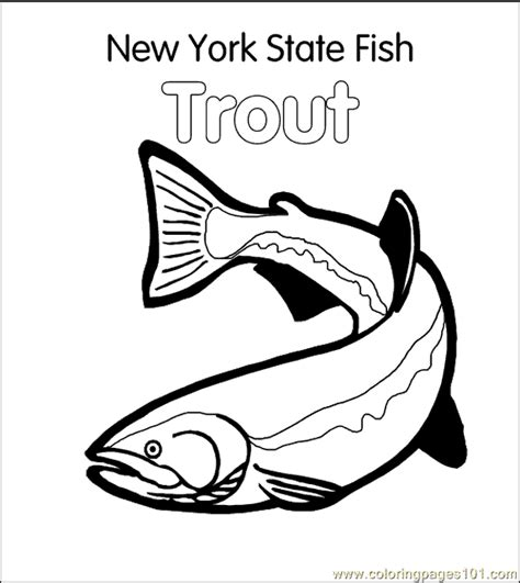 trout fish coloring pages coloring pages