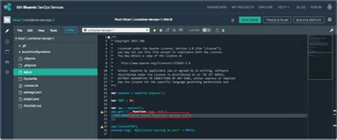 docker bluemix tutorial using containers with bluemix devops services