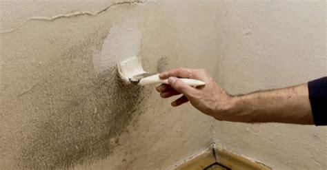 Pinturas En Paredes #3: Pintando-moho-pared.png