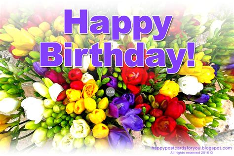 happy images free birthday flowers images free www pixshark images
