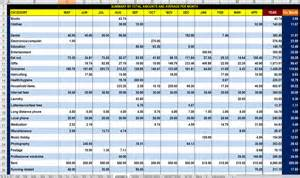 Accounts Payable Tracking Spreadsheet Free 12 Month Advanced Finances Tracking And Analysis