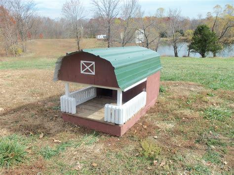 guinea pig houses juliana micro mini pigs at ahrens hobby farm pig houses