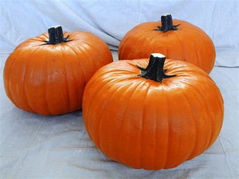 large plastic pumpkins how to make a pumpkin topiary for how tos diy