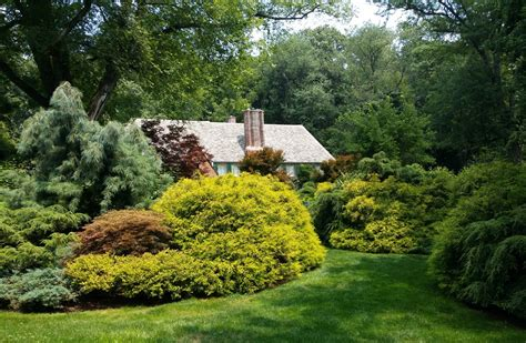 landscaping pics layering to create a lush landscape landscaping with