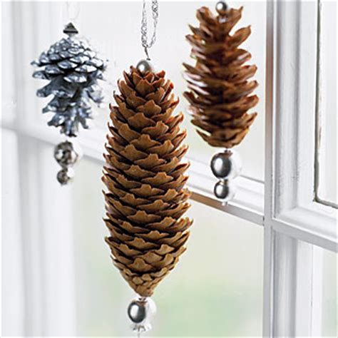 gonna stuff a chicken ideas for pine cone christmas