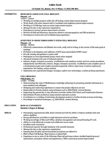 Biology Resume by Cell Biology Resume Sles Velvet