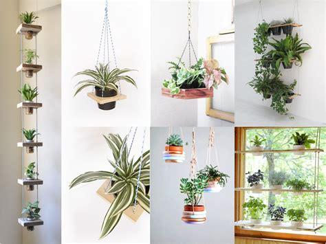 decorar los interiores con plantas 10 ideas de decoraci 243 n con plantas colgantes