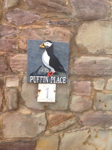 review puffin place puffin pleasure