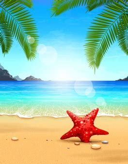 beach vectors, photos and psd files | free download