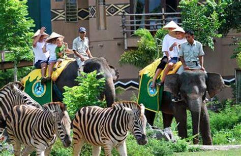 Safari Anak Bali Safari Marine Park bali safari and marine park segarebalitour