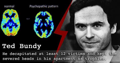 what is serial studies reveal what really triggers serial killers to murder