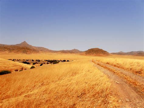 road through grasslands free stock photo public domain pictures