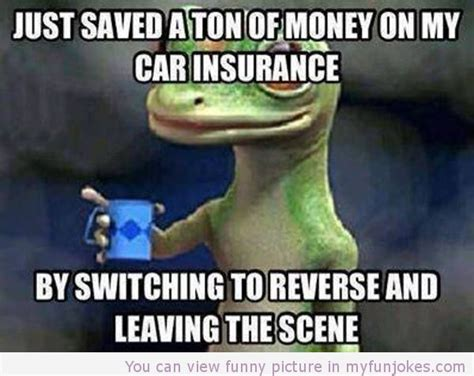 Car Insurance Meme - 222 best images about auto on pinterest