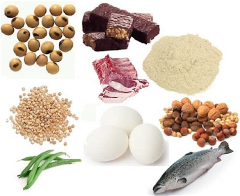 protein filled foods foods filled with protein for your look sweet additions