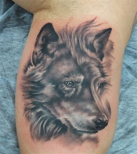 excellent wolf ideas part 16 tattooimages biz