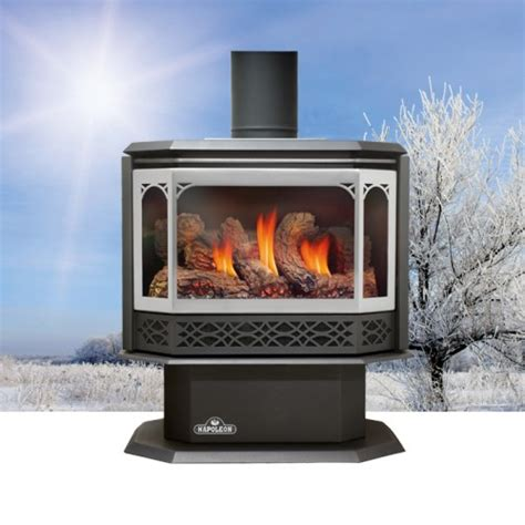 Napoleon GDS50 1NSB Havelock Direct Vent Natural Gas Stove