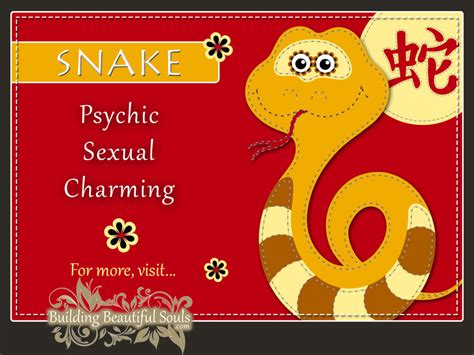 new year animals relationship zodiac snake year of the snake