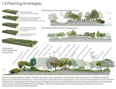 landscape pattern analysis key issues and challenges strategy phase landscape diagram google search art