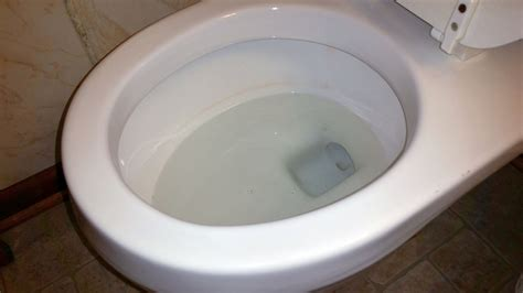 red bacteria in bathroom adjusting water level in toilet bowl house remodeling