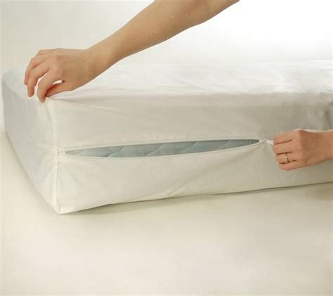 bed bug mattress covers encasements pestseek
