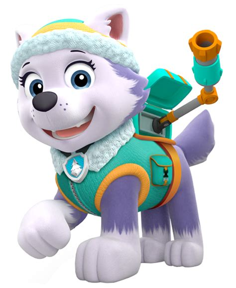 paw patrol everest everest paw patrol wiki fandom powered by wikia