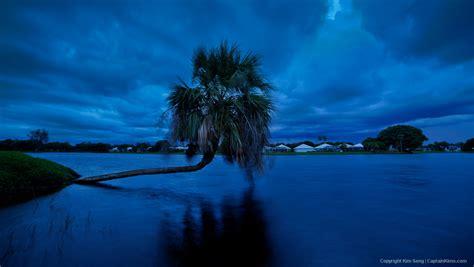 lake katherine tree lighting palm tree lake catherine during incoming