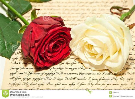 imagenes rosas blancas y rojas rosas rojas y blancas imagen de archivo imagen 12838781