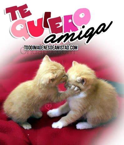 Imagenes Te Quiero Ver Amiga | imagenes de te quiero amiga archives im 225 genes de amistad