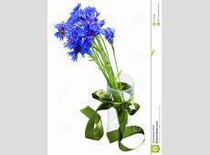 Blue Corn Flowers Bouquet In Vase Stock Photo - Image ... X 23