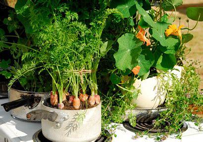 chelsea fringe crops  pots  elms   south bank