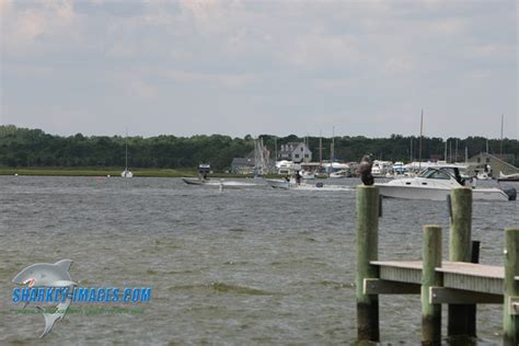 this was no boating accident quote another boating accident in brick nj page 28