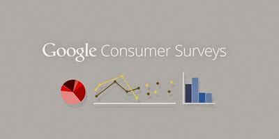 Consumer Surveys For Money - google introduces a new way to monetize your website
