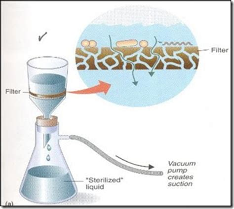 microbiology filtration