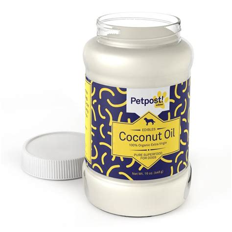 coconut for dogs organic coconut for dogs petpost
