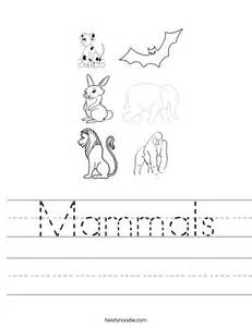 mammals worksheet twisty noodle