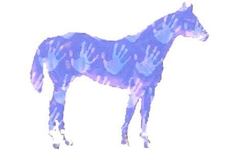 reiki  horses