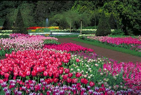 Flower Gardens In Pa Zsazsabellagio De