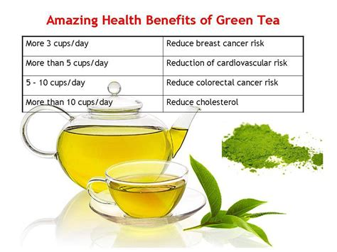 How Much Green Tea Should I Drink To Detox by Health Benefits Of Green Tea That You Must Trends