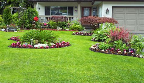 landscaping fertilization irrigation clean cut lawn